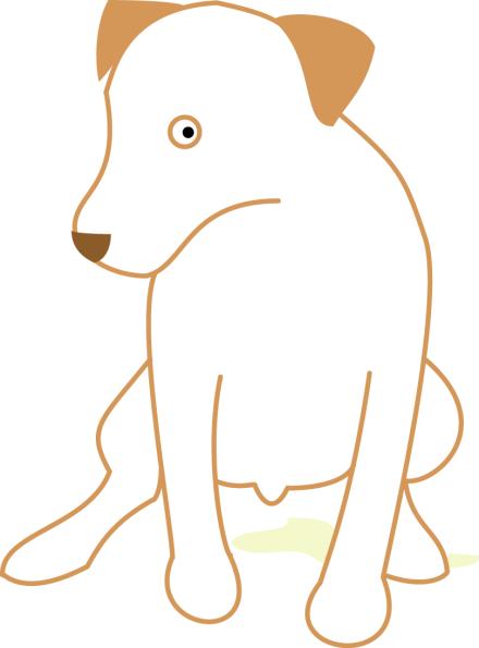 dog+peeing
