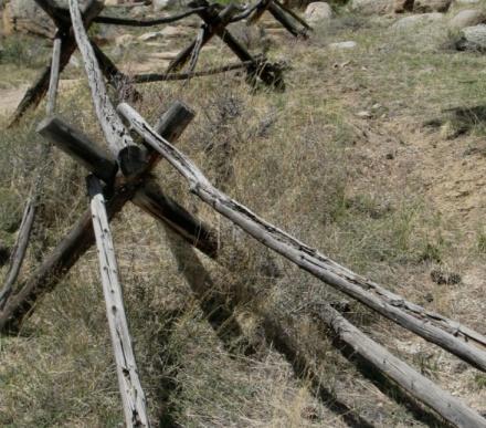 splitrail