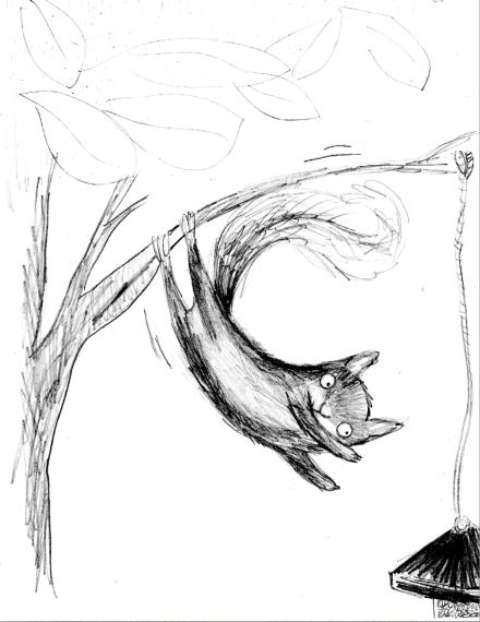 StretchSquirrel