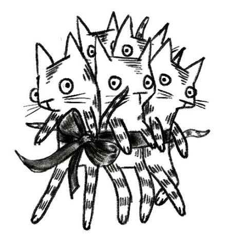 KittenBouquet