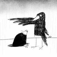 #AKR:crow